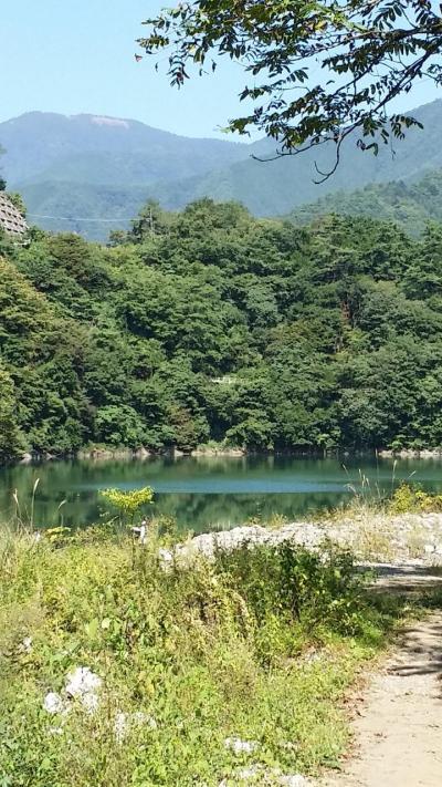 東京都立奥多摩湖畔公園 山のふるさと村の8人用コテージ