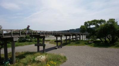 蓬莱橋と牧の原台地の茶畑
