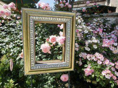 箱根ガラスの森 華やかなバラの季節