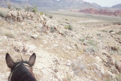 ラスベガスへ行ってみた☆2☆彡乗馬(@レッドロックキャニオン)と「O」鑑賞♪