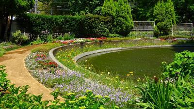 堺市大仙公園 緑化センターの見学