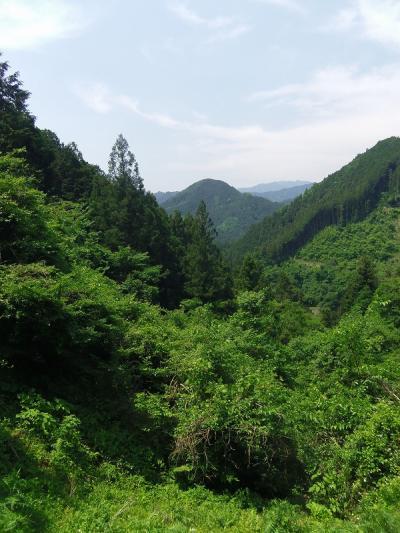 高山不動・ 関八州見晴台・顔振峠