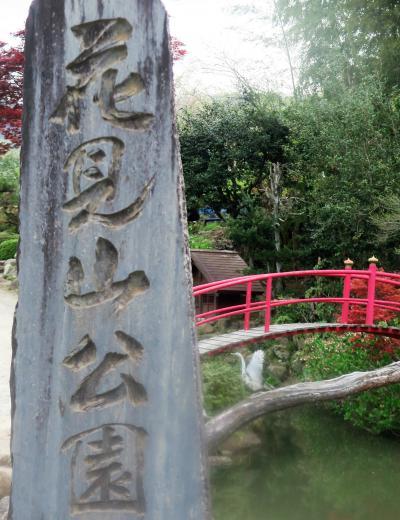 福島3 花見山公園A フリーハイキング3時間 ☆山頂までの花だより