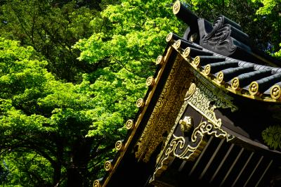 2016新緑の北関東めぐる旅vol.2(華厳の滝&日光東照宮&輪王寺大猷院)