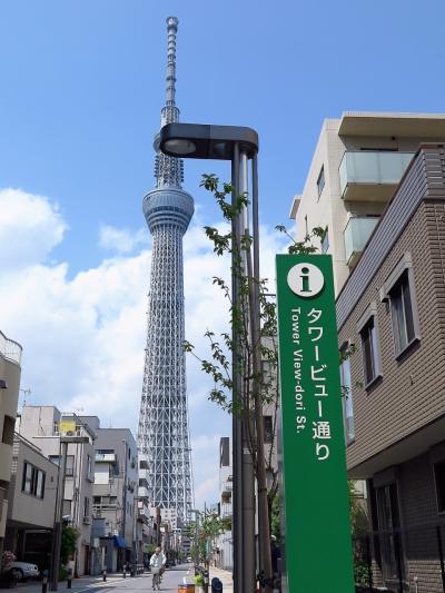 東京スカイツリー1/2 タワービュー通りの視点 ☆電線の地中化等が完了