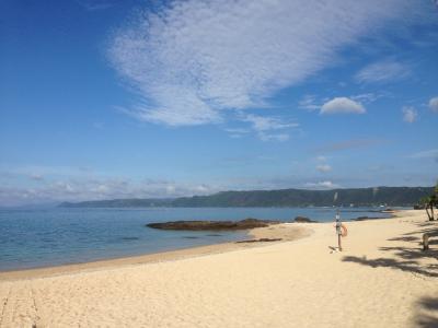 バニラエアで行く奄美大島の旅