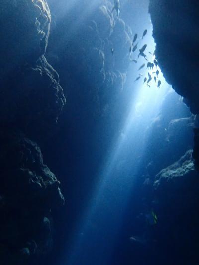 八重山列島ひとり旅 その2 黒島ダイビング