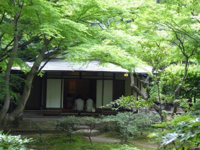 初夏の「旧古河庭園」♪ Vol2 新緑の美しい日本庭園♪