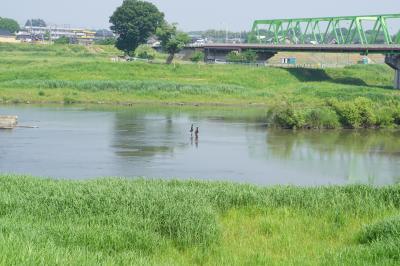 鬼怒川の水運で栄えた水海道から下妻の街歩き~「鬼怒川の水は尽きるとも、その富は尽きることなし」の水海道は今では単なる陸の孤島。厳しい時代の変遷です~