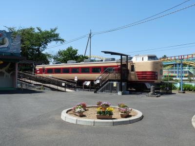 華蔵寺公園の特急とき__C61の代替機は、クハ183だった(群馬県・伊勢崎市)