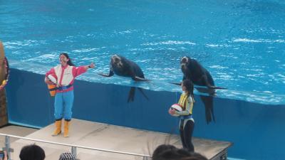 「横浜八景島シーパラダイス」へ行ってきた~(2)「やっぱりいいね?水族館!」初めて入りました。