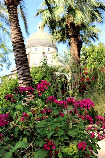 歴史と民族を学ぶ充実の旅イスラエル7日間(ティベリア観光その1)