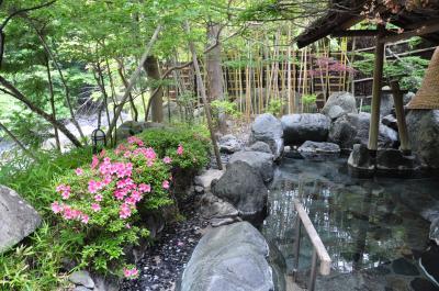 週末温泉旅 in 山梨 ~赤沢宿、奈良田温泉、西山温泉「慶雲館」
