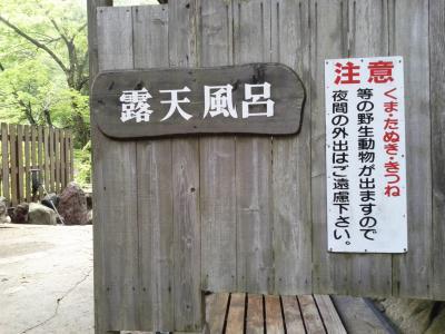 富山 庄川峡 船の旅