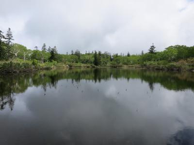 きーちゃんツアーへようこそ♪ 1泊2日のニセコ&洞爺湖・・・2日目。*:゜☆ヽ(洞爺湖)/    【ニセコ神仙沼】*【昭和新山&有珠山】