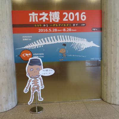 関東道の駅 スタンプラリーの旅5