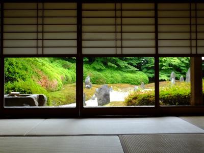 東福寺光明院 サツキの風景!2016年