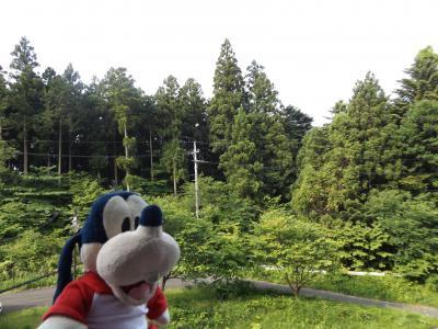 グーちゃん、板室温泉へ湯治に行く!(美しいウグイスの鳴き声に感動!編)