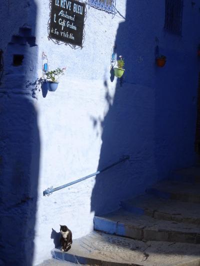 2度目のモロッコ。今回は自力で周ります。11-1)この旅最後の観光地シャウエン。2日目前編