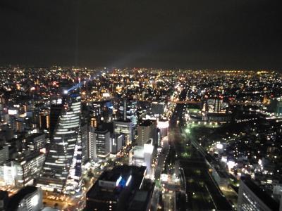 なばなの里で花を楽しみ名古屋のホテルを満喫(2)