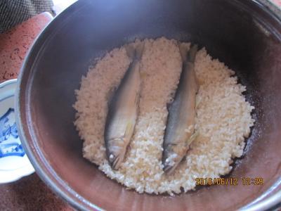 「京亭」の鮎料理と長瀞 日帰り旅