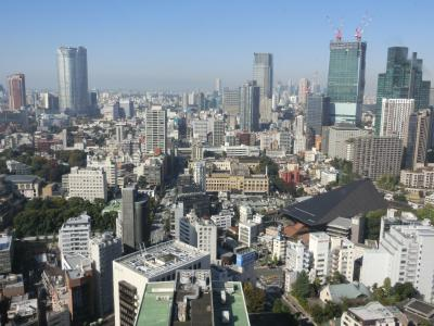 東京タワー (大展望台)