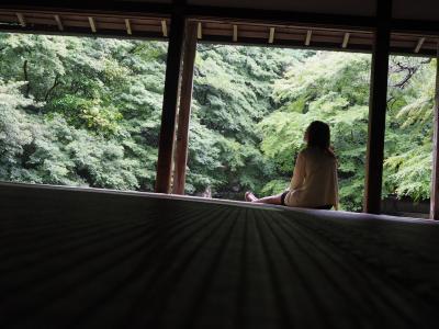 蓮花寺 雨が好きになる京都のお寺part1