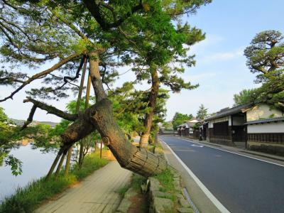 出張ついでに訪ねる、情緒溢れる水の城下町・松江~出雲のむかし町をあるく~