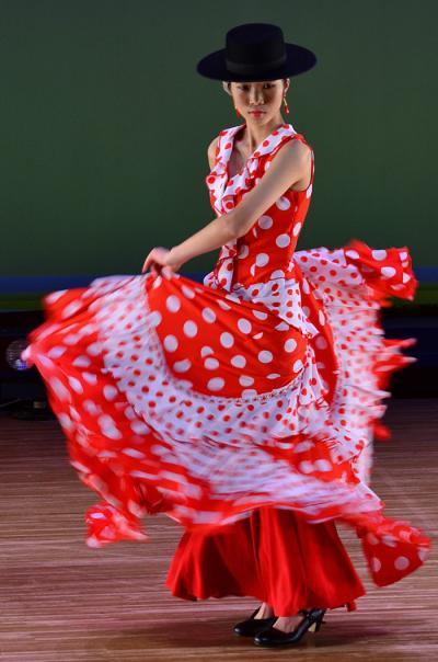 第49回多治見市市民文化祭 ダンスの部/flamenco 他.