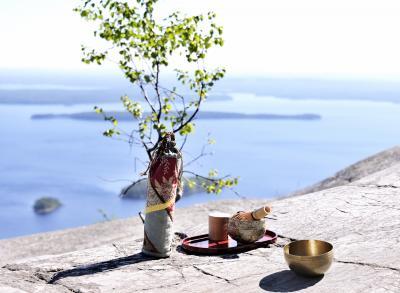 フィンランド 1  Koli National park  光の輝き 翠の風と森と湖  ドライブ