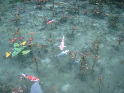 「関・美濃加茂」 今が旬の旅!~モネの池、あじさいロード、関善光寺、刃物の展示、天狗山、迫間不動尊~