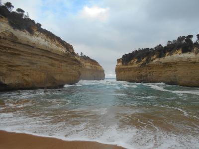 オーストラリア旅行⑦メルボルンその2:グレートオーシャンロード日帰りツアー