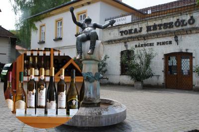 貴腐ワインの生産地とブドウ畑の文化的景観トカイ