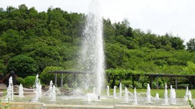 兵庫県立加西フラワーセンター 上巻。