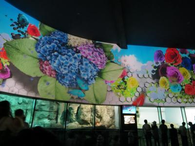 八景島シーパラダイスに行きました!