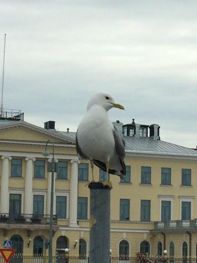 14年ぶりの海外一人旅、憧れのヘルシンキへ。その2。