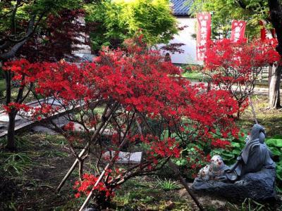 金沢の私のパワースポット香林寺