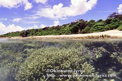 早めの夏休みで、八重山諸島(小浜島、新城島、波照間島)を周遊