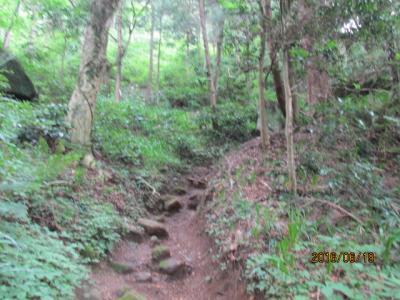 顕鏡寺の白蓮さんと石老山(7)登山開始。