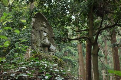 (大人の遠足) 相模湖・嵐山~石老山