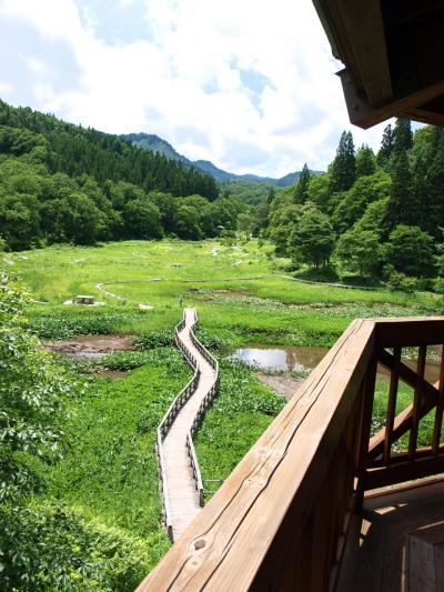 「 たきがしら湿原 」 & 御神楽温泉ブナの宿 「 小会瀬 」 の小さな旅 < 新潟県東蒲原郡 >