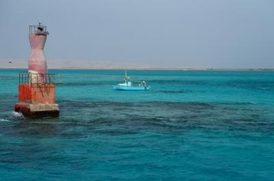 紅海で格安ダイビング (Budget scuba diving in Red Sea)