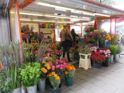 オランダの花屋は、色彩が満載で・・・