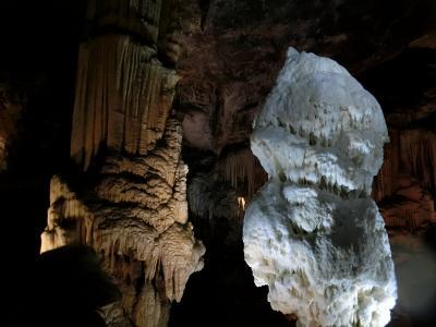クロアチア・スロベニア他10日間リベンジの旅 3 (スロベニア ポストイナ鍾乳洞)