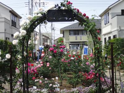 住宅地の中の「秘密の花園」~西東京市保谷町ローズガーデン