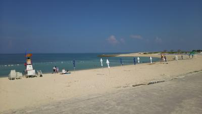 沖縄本島では海水浴で熱帯魚と出会えるのか