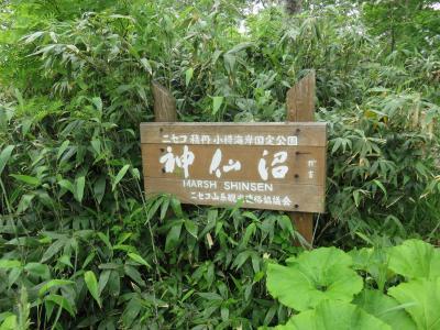 残りの北海道満喫の旅2  6日目