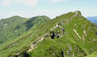 夏の谷川岳へ  色とりどりの高山植物探しての山歩き。
