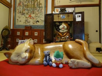 猫寺雲林寺を再訪する