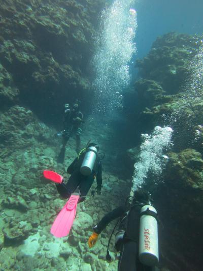 3回目の阿嘉島ダイビング